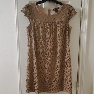 Gold lace mini dress